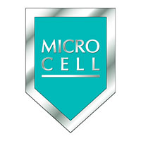 Microcell 2000